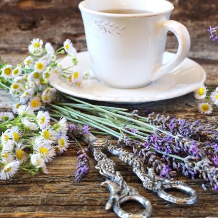 Luma Tea with lavender and chamomile